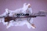 Tom Shelhamer-A & M Rifle Co 17 Javelina - 9 of 14