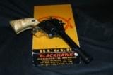 RUGER BLACKHAWK BRASS FRAME - 12 of 12