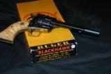 RUGER BLACKHAWK BRASS FRAME - 10 of 12