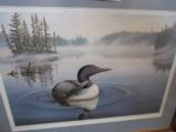 Loon Facing To Our RIGHT by Terrill Knack framed print, Great To Display Above Your Rack - 2 of 2