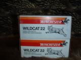 NEW Winchester Wildcat .22 LR