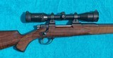 """Rigby - London -243 Win - Light Sporting Magazine Rifle - 23"""" Bl -- 99% Condition - 3 of 23"""