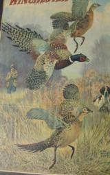 Original Winchester 1929 Calendar Lynn Bogue Hunt image - 4 of 5