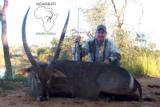 Ngwarati Safaris Africa offers 10 Day Buffalo & Plains Game Safari - 2 of 12