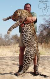 Ngwarati Safaris Africa offers 10 Day Classic Leopard Hunt