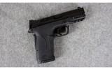Smith & Wesson ~ M&P Shield EZ ~ .380 Auto