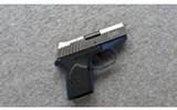Remington ~ RM380 ~ .380 ACP