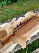 Ruger 77/22 Magnum - 10 of 14