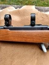 Ruger 77/22 Magnum - 13 of 14