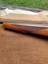 Ruger 77/22 Magnum - 14 of 14