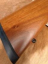 Ruger 77/22 Magnum - 1 of 14