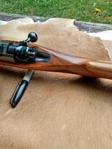 Ruger 77/22 Magnum - 11 of 14