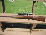 Winchester model 43 Hornet
