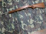 Ruger Davidson's Distributor Exclusive Stainless/Circassian Walnut 10/22