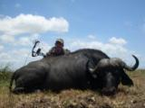 Cape buffalo package (South Africa): 7 days all inclusive - 4 of 4