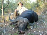 Cape buffalo package (South Africa): 7 days all inclusive - 3 of 4