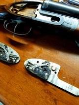 Fabrique National 16 gauge side by side Side lock shotgun - 14 of 15