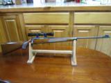 Single Long Gun Display Stands