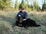 Black Bear, Alberta, Canada