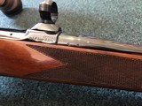 Colt Sauer Sporting .243 win - 15 of 24