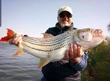Tanzania Tigerfish and more - 2 of 10