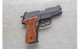 Sig Sauer ~ M11-A1 ~ 9mm