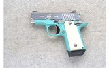 Kimber ~ Micro Special Edition ~ .380 ACP - 2 of 2