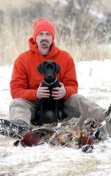 Bird Dog Training - 4 of 5