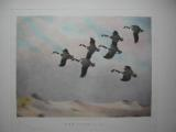 WATERFOWL ART BY EDGAR BURKE