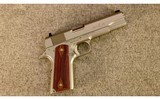 remingtonmodel 1911 r1 stainless.45 acp