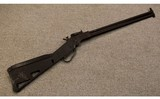 Springfield Armory ~ M6 Scout Rifle ~ .22 Hornet / .410 Ga.