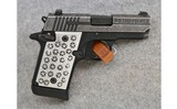 SIG Sauer ~ Model P938 We The People