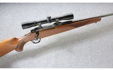 Ruger ~ M77 with Tang Safety ~ .243 Win.