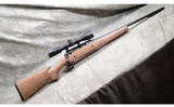 savage arms incaxis.243 winchester