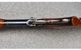 Winchester ~ Model 71 ~ .348 W.C.F. - 12 of 13