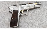 browninggold classic hi power9 mm luger