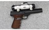 Browning ~ Buck Mark ~ .22 Long Rifle - 1 of 2