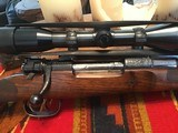 Engraved Mauser Bolt Magazine Sporting Rifle by John Dickson - 14 of 15