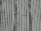 PARKER VH .410 SIDE BY SIDE SHOTGUN (INVENTORY#10294) - 12 of 20