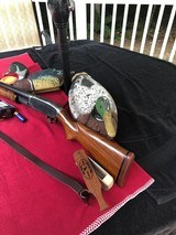 Winchester Model 12, 12 Gauge Shotgun - 9 of 17