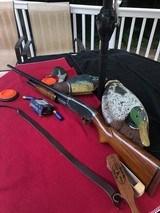 Winchester Model 12, 12 Gauge Shotgun - 10 of 17