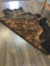 Full size Buffalo hide - 7 of 9