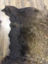 Full size Buffalo hide - 6 of 9
