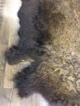 Full size Buffalo hide - 2 of 9
