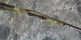 "Benelli M2 Performance Shop Waterfowler 20GA 28"" (860) - 5 of 5"