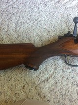 Sako22HornetL46 bolt23 inch barrel with clip and open sights - 9 of 12