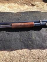 Winchester 97 12 gauge cylinder choke - 14 of 15