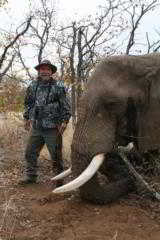 TROPHY BULL ELEPHANT HUNTING***END OF SEASON CITIES SPECIAL***