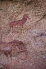 ES Safaris Mapungubwe - 13 of 16