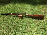 "Henry ""Big Boy"" Classic Lever Action 45LC"
